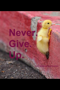 Empower, Empower You, Empower Your Network, Nancy Baki, Never Give Up