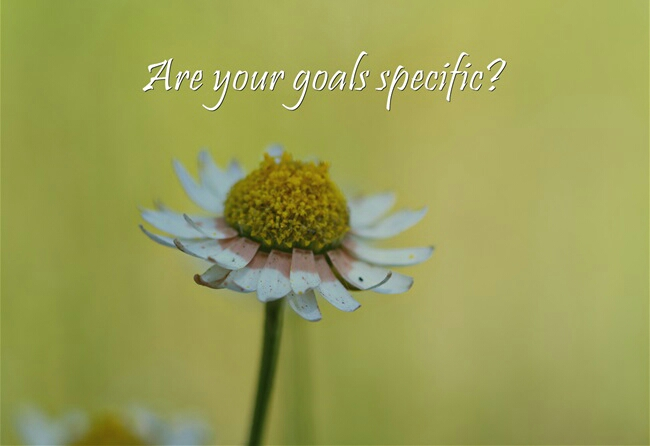 Are-your-goals-specific-1
